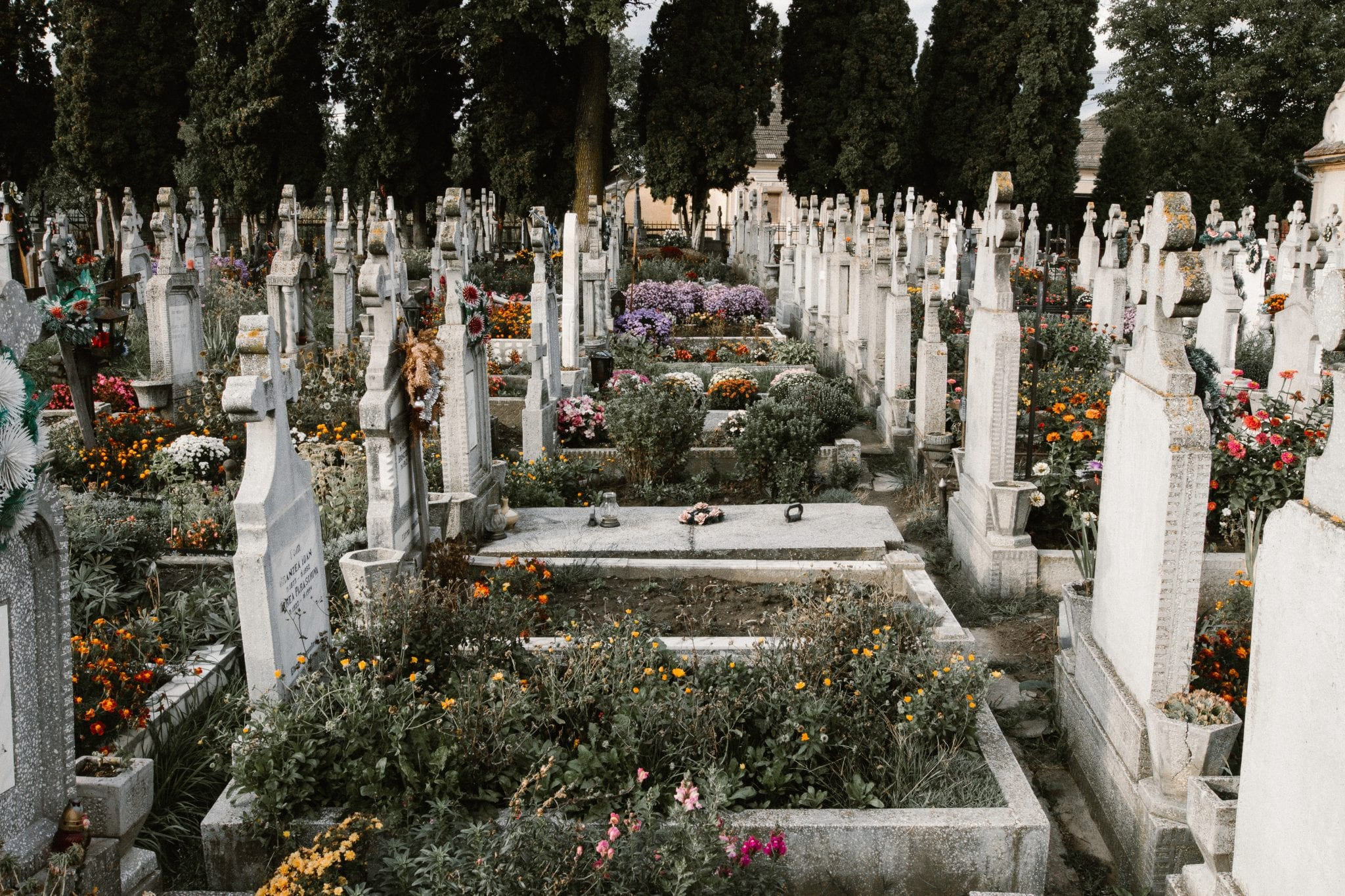 14 Stoic Quotes on Death